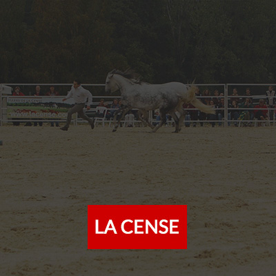 carre.client.edition.la.cense1