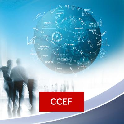 carre.client.reglementees.ccef2