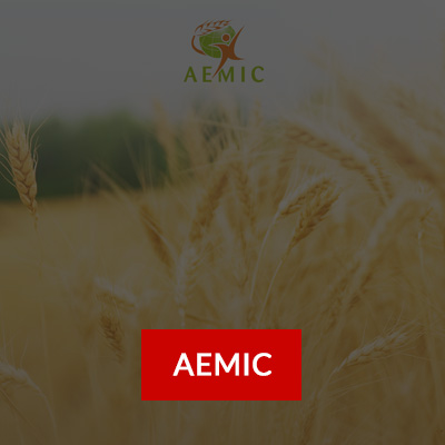 fond.client.agroalimentaire.aemic1