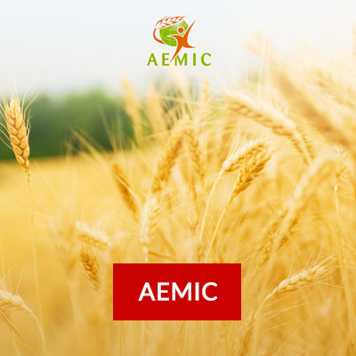 fond.client.agroalimentaire.aemic2